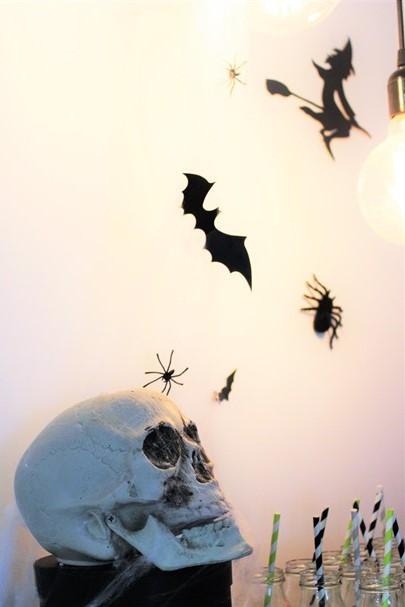 גולגולת, עכבישים ועטלפים
