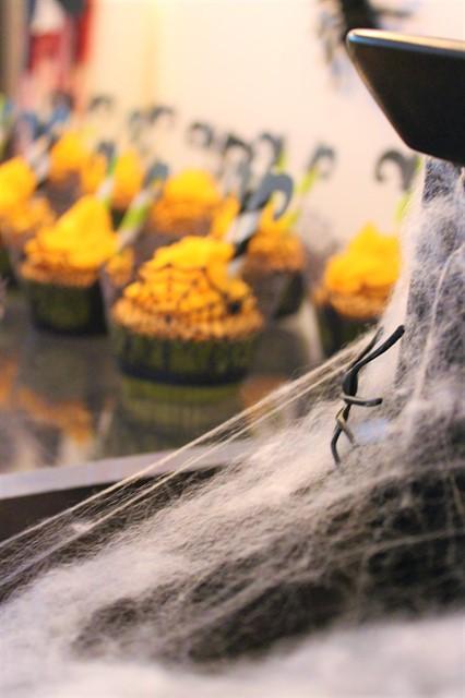 קורי עכביש
