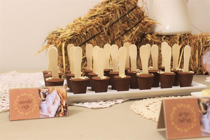 לוליפופס שוקולד וחיטה