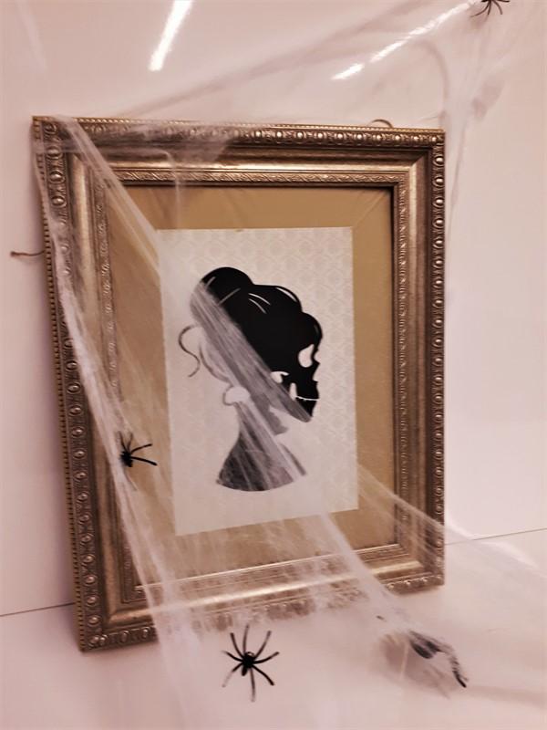 תמונת שלד ממוסגרת וכורי עכביש